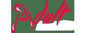 AdultGameson Dienoraštis