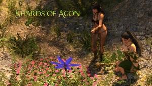 Shards of Agon