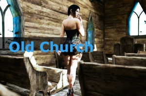 Old Church Adult Game