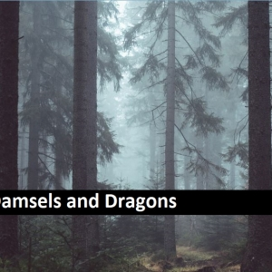 Damsels and Dragons
