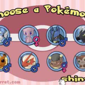 Pokémon-Amie de Tay Ferret