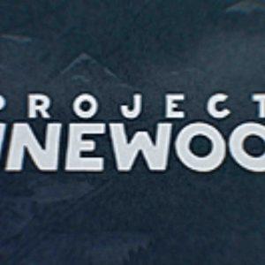 """Projektas """"Pinewood"""""""