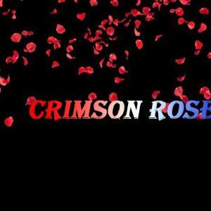 深红色的玫瑰2