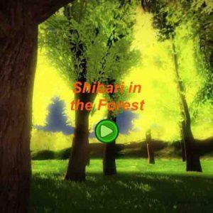 Shibari în pădure