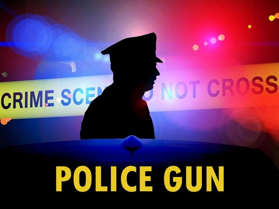 Police Gun - 3D Adult Games